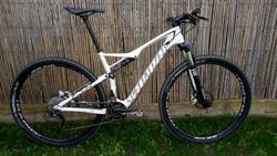 "Specialized Epic Carbon, 29"", velikost L"