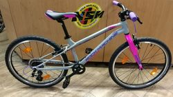 Rock Machine Thunder 24 gloss grey/pink/violet Novinka 2020