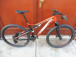 Specialized Epic S-works 29 L