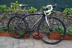 WILIER TRIESTINA CARBON