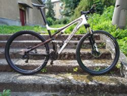 Specialized Epic Carbon 29