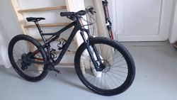 epic fsr expert carbon 29