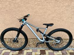 Specialized Stumpjumper Evo S3 29