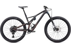 Specialized 2020 STUMPJUMPER EVO COMP CARBON 29