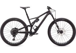 Specialized STUMPJUMPER EVO PRO 29 2020