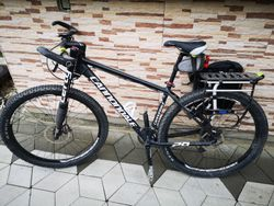 Cannondale Flash29 Alloy 1