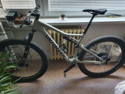 Specialized Epic Men's Expert Carbon Evo 29
