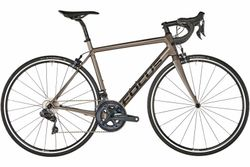 FOCUS IZALCO RACE 9.9 MODEL 2019