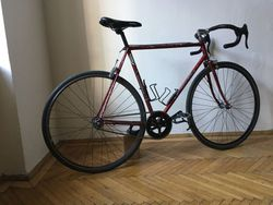 Favorit singlespeed