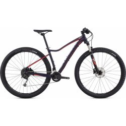 Specialized Jett Comp 29 2017