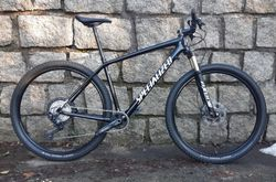 Specialized Epic HT 2019 L