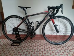 Wilier Montegrappa XS